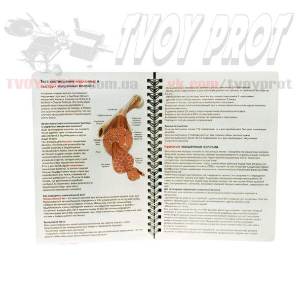 Дневник тренировок для спортсменов и фитнесса - описание мышц и работы спортсмена