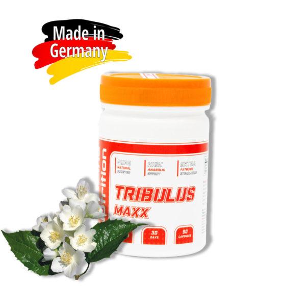 Купить Tribulus terrestris MAXX от BioLine Nutrition трибулус террестрис - тесостероновый бустер: отзывы - цена - аптека - приема трибулуса, как принимать, в интернет магазине спортивного питания Tvoy-Prot.com.ua