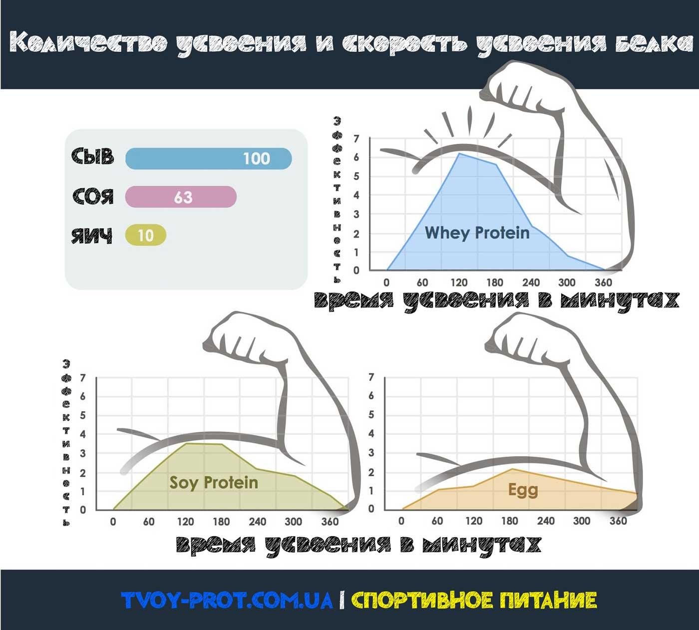 Как принимать изолят сывороточного или соевого протеина белка для роста мышц или похудения - tvoy-prot.com.ua