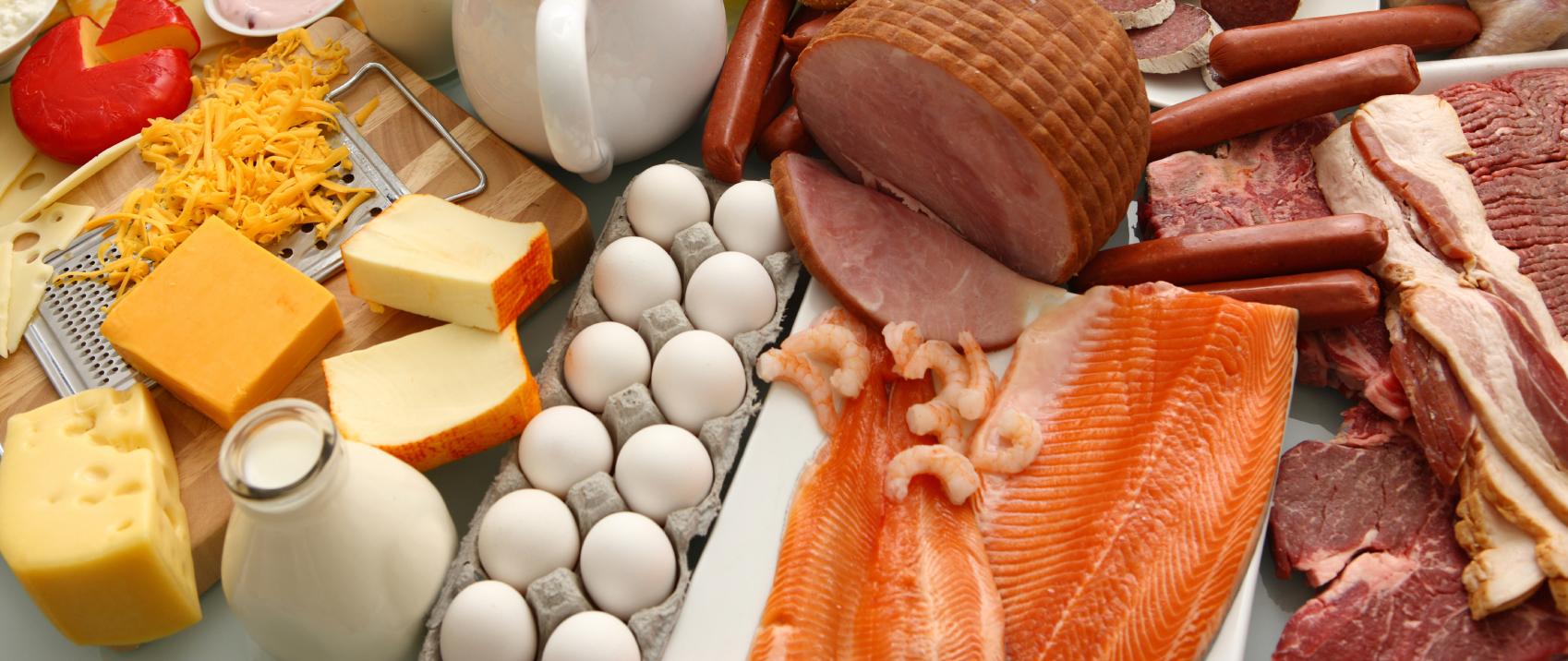 белковая еда для похудения отзывы