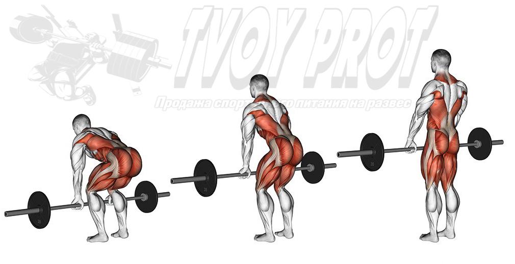 Становая тяга - упражнения на спину