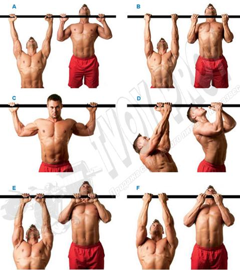 Спина - упражнения для развития спинных мышц - подтягивание