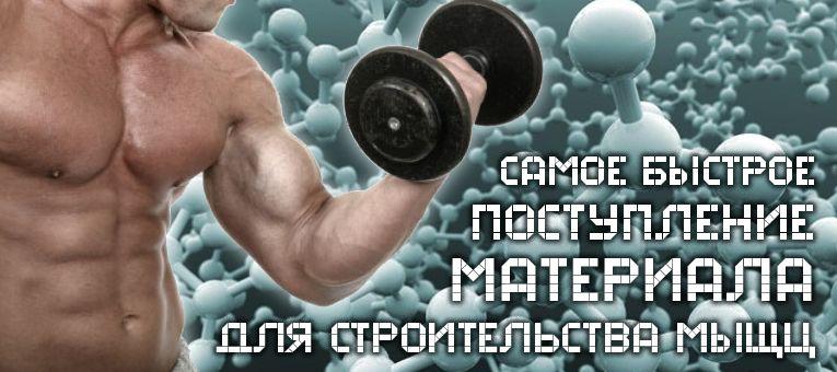 Виды аминокислот в спортивном питании
